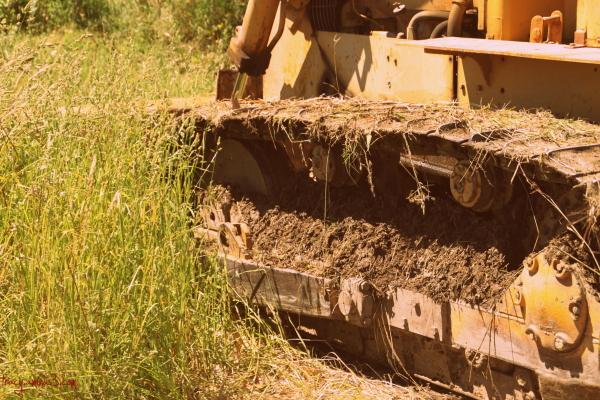 Working bulldozer