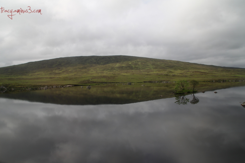 Reflective reflection