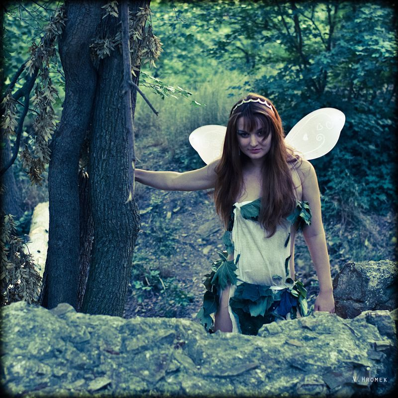 Fairy in a forrest by an old fort