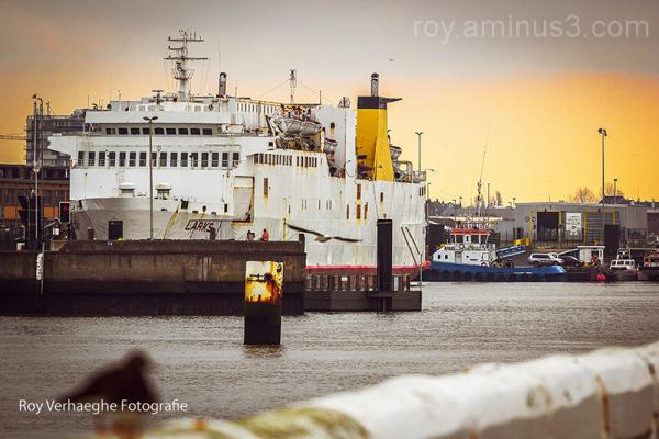 Ex Ferry to Dover