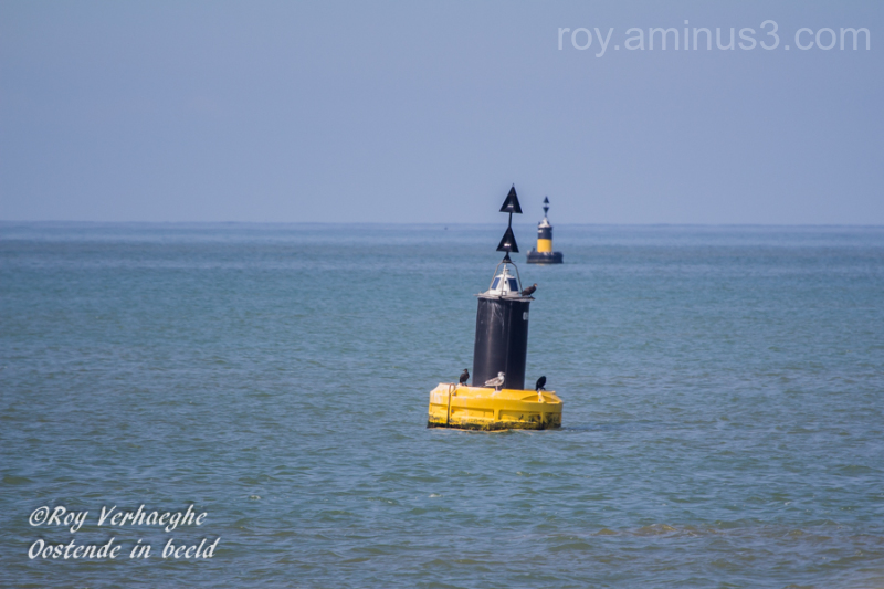 De vlakke zee...