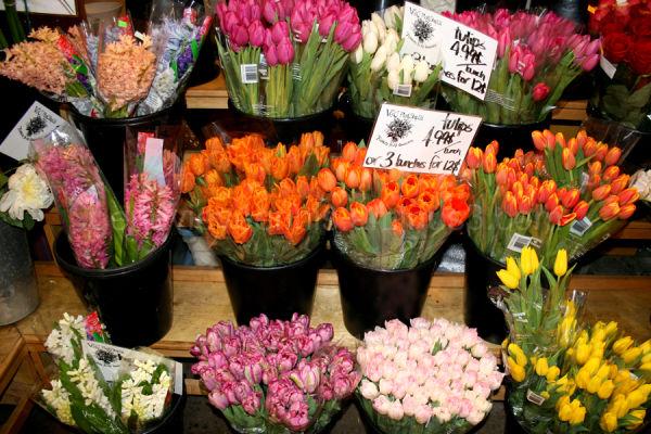Flowers in Canada