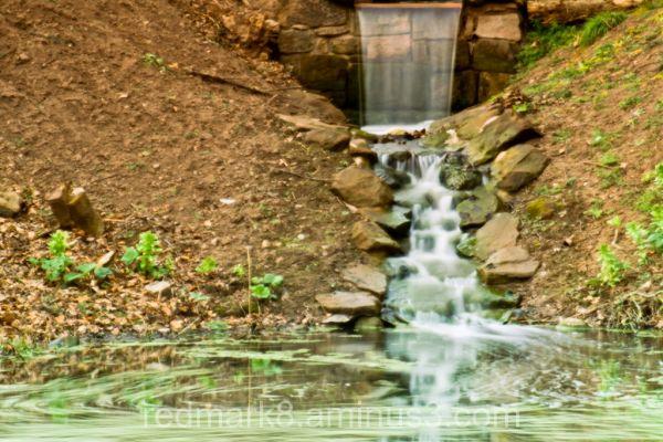 Water fall in Ness Gardens