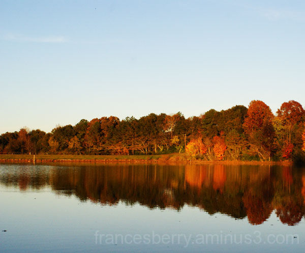 Photo of fall trees reflected in lake