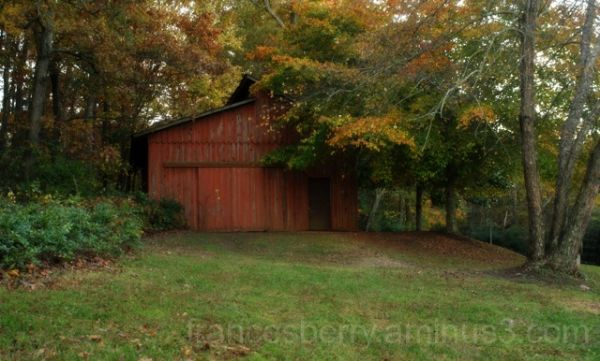 Photo of an old red barn with fall foliage