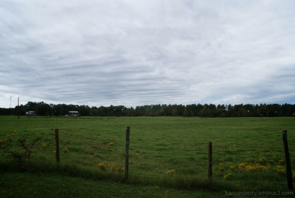 cloudy sky and green field with fence
