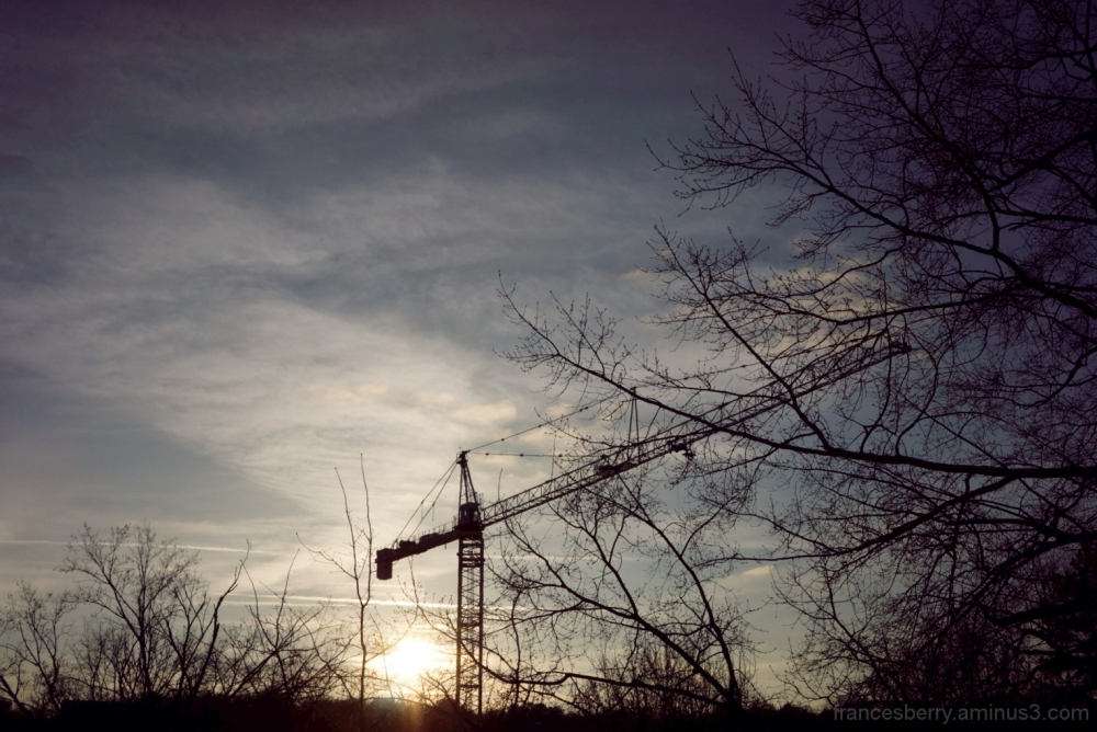construction crane in silhouette with trees