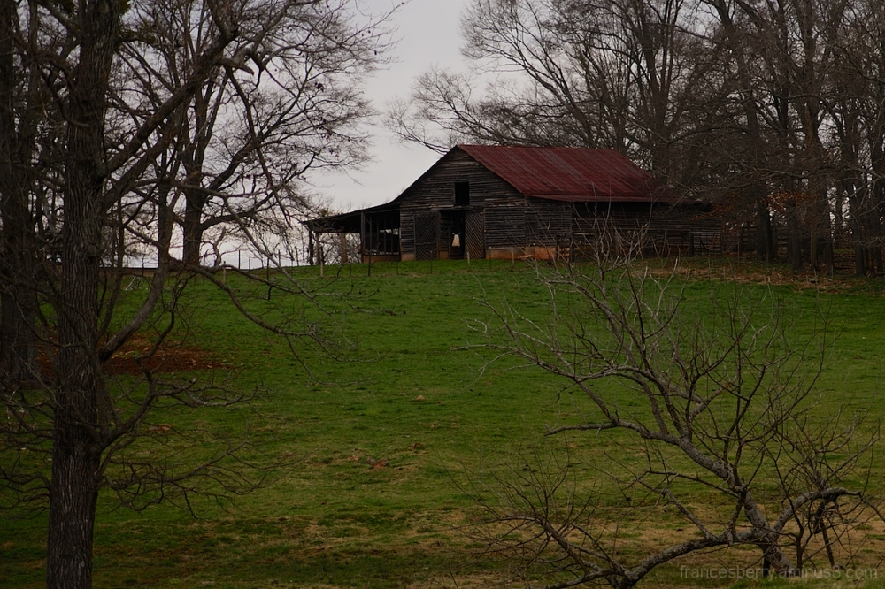 old structure in green pasture
