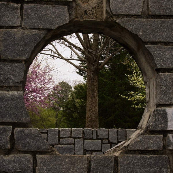 rock wall frame within frame photo