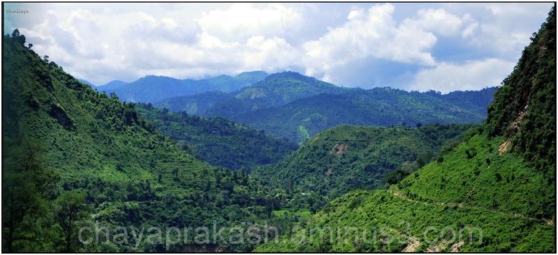 Himalayaan Foothills