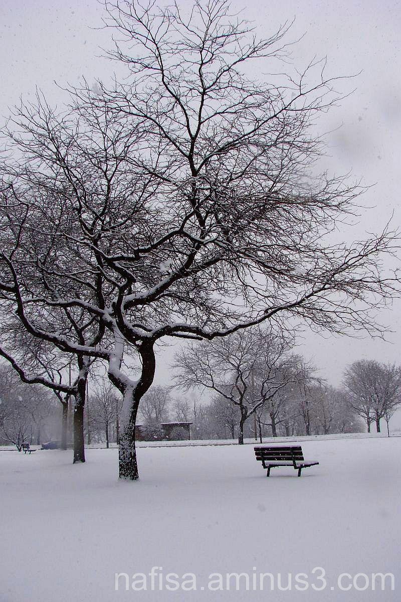 Milwaukee buried under snow