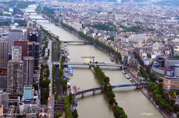 Seine from Eiffel Tower Summit