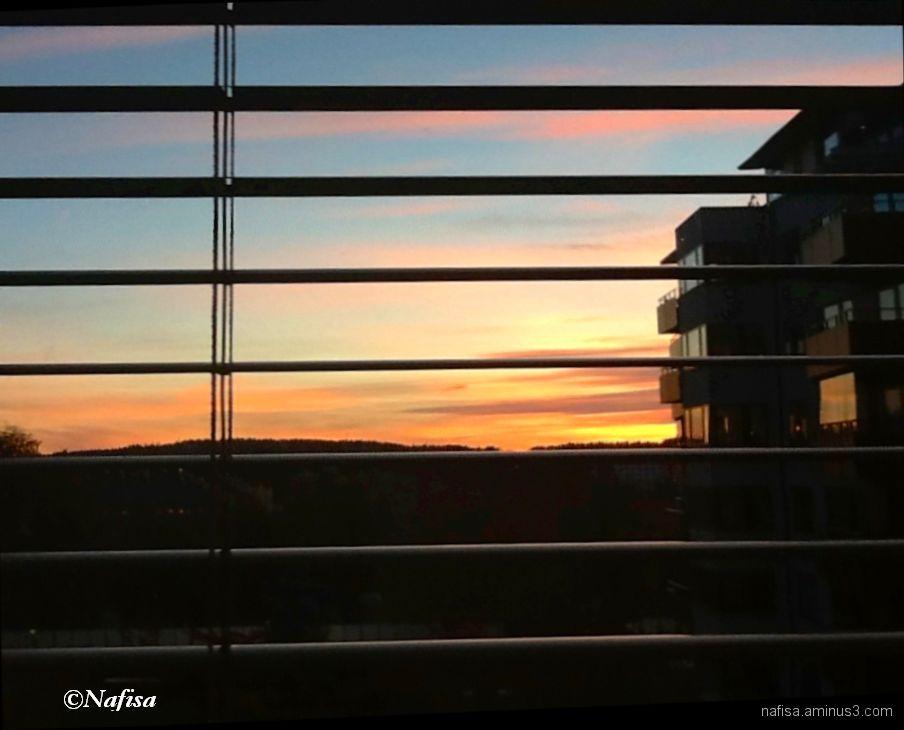 dusk through blinds