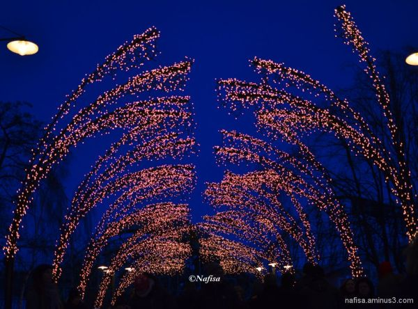 Liseberg lights 3