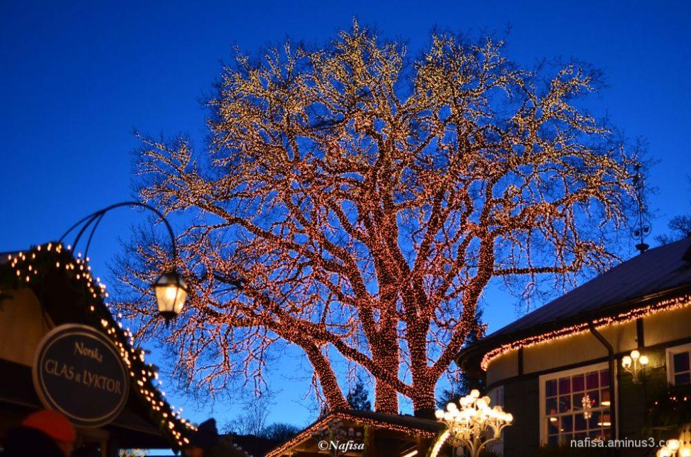 Liseberg lights