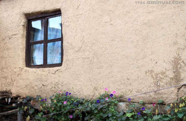 پنجره باز می شود؟