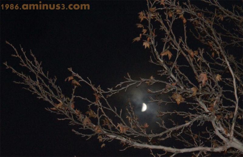 ماه من،هرجا که باشم با من است
