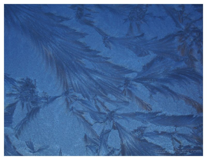 blue, cold, ice, frost