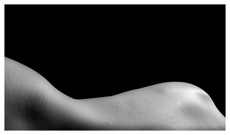 black&white, back, person, nude, skin