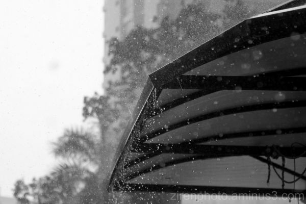 During a downpour in Raffles Institution.