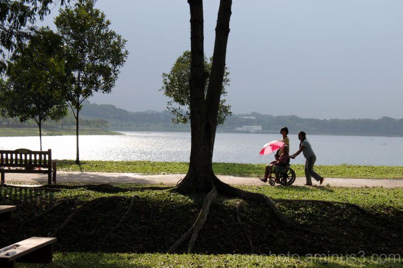 An elderly woman in a wheelchair along the path...