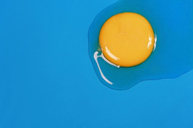 Egg ..