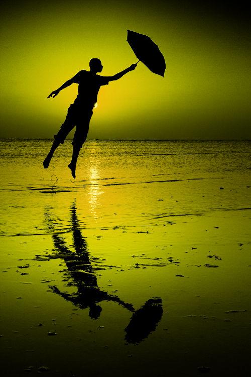 I will Fly !!