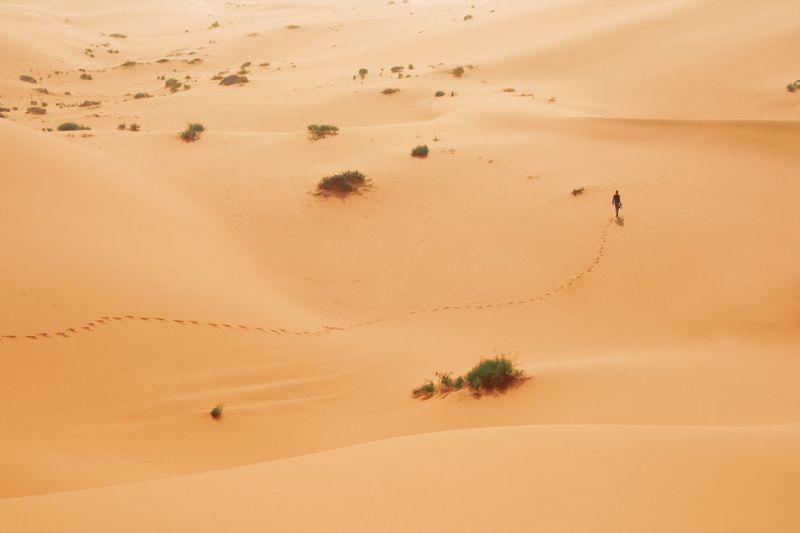 Lost in the desert ..
