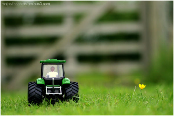 toy green tractor gate buttercup