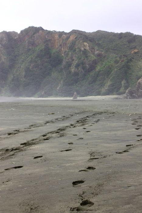 Footprints on Karekare