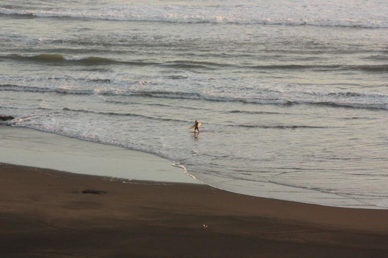 Surfer at Muriwai