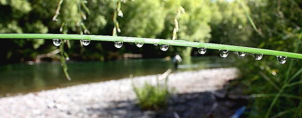 drops Turangi Tongariro River