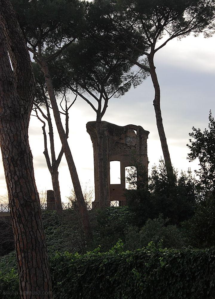 Palentine view