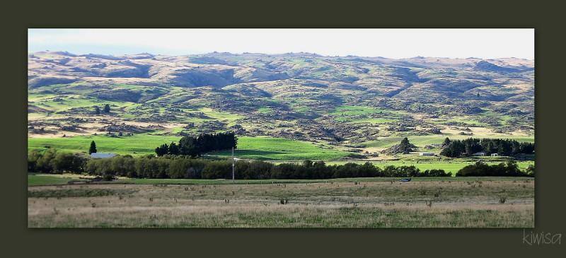 #8 Otago