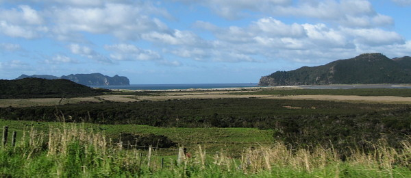 View back to Whangapoua Beach from the road