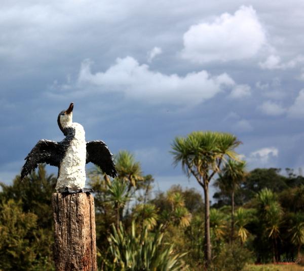 #7 Harbourview Sculpture Trail: Cormorant