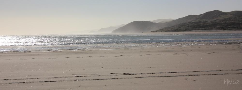 Wainui Beach Raglan