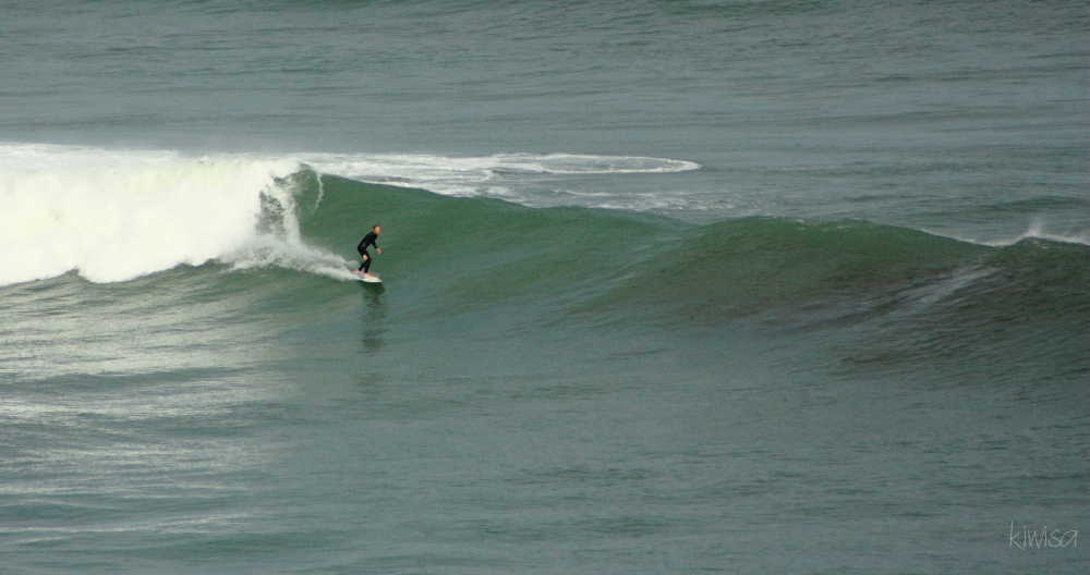 Muriwai surfer