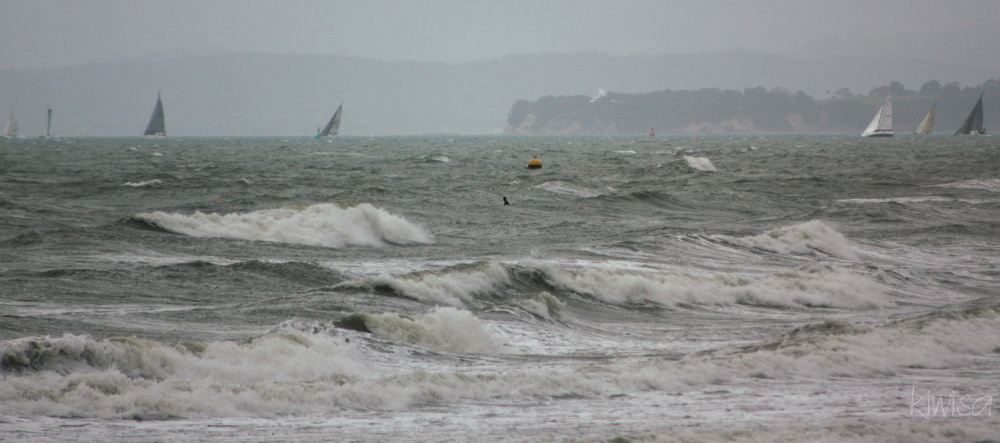 Water sports on a windy day