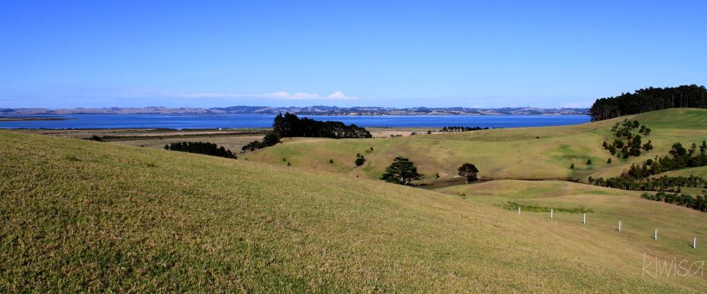 Gibbs Farm view