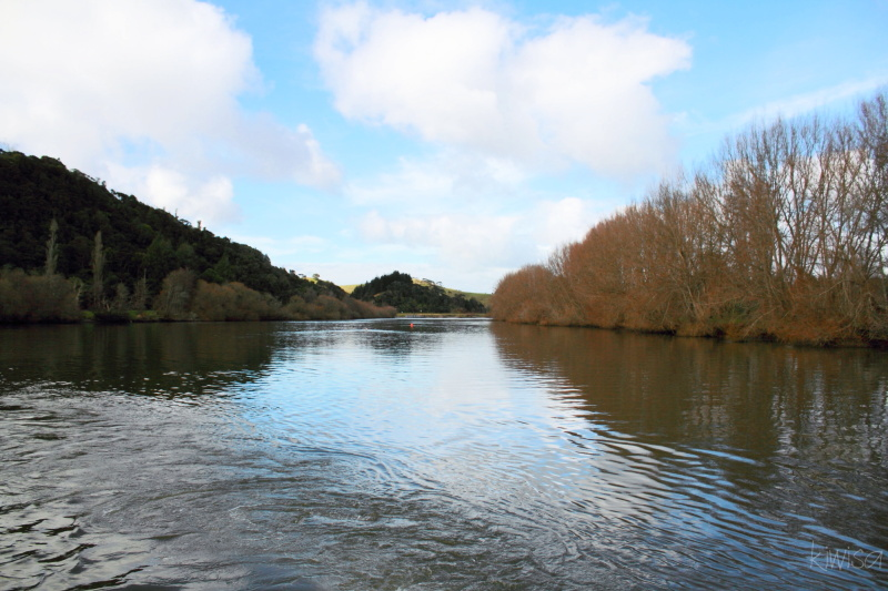 #1 Waikato Riverboat cruise