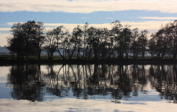 Mirror image reflections
