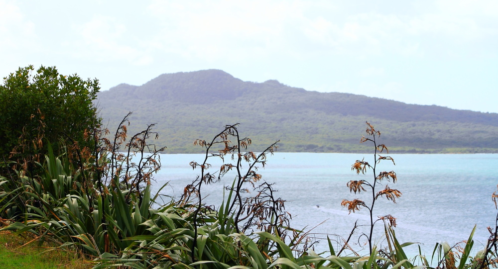Rangitoto view from North Head