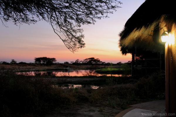 Onguma - dawn
