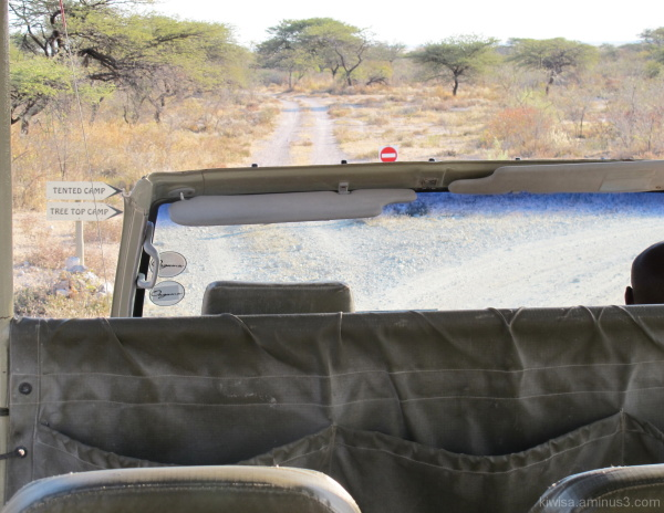 Onguma - safari drive