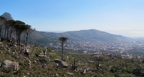 From the slopes of Table Mountain