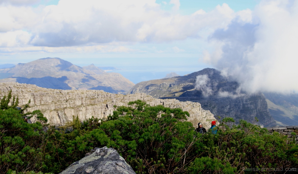#3 Views from the top of Table Mountain