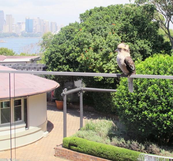 #1 Taronga Zoo, Sydney
