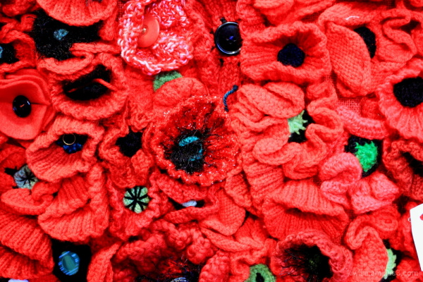 #3 Poppy wall of Remembrance for Anzac Day 2015