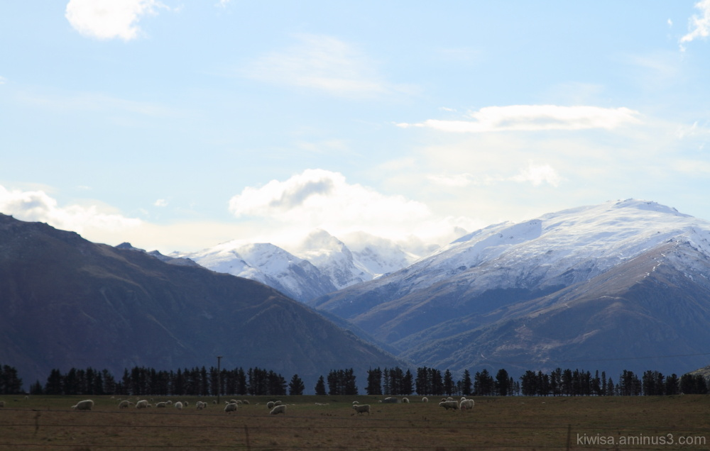 #3 Queenstown to Te Anau